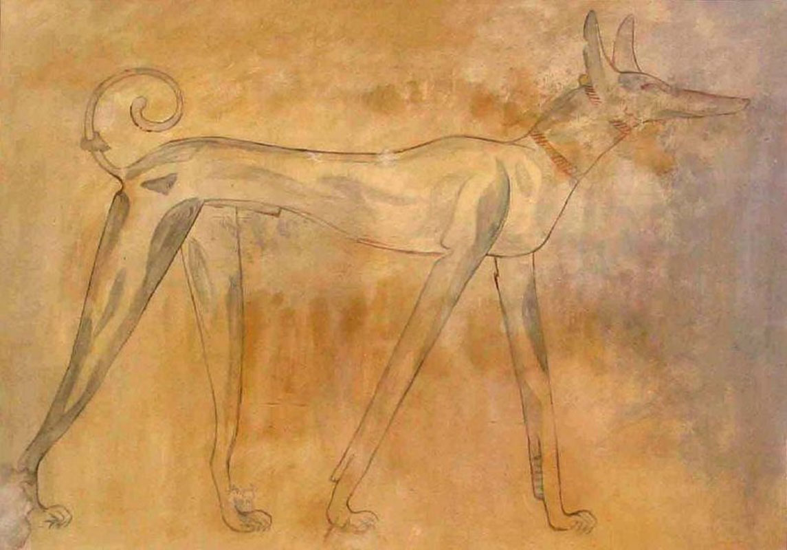 Sighthounds and primitive dogs in Italy and the mediterranean basin